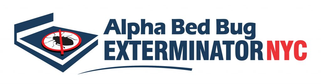 Alpha BB NYC Logo